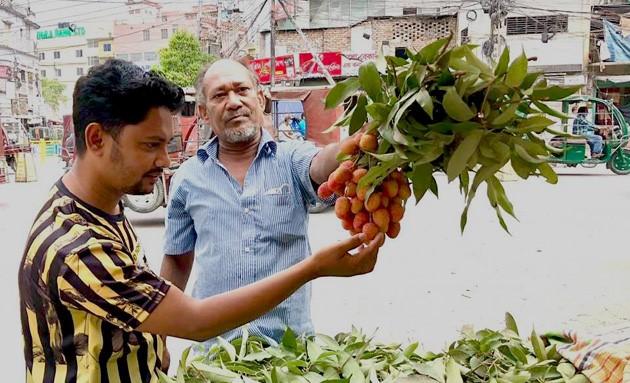 রাজশাহীর বাজারে মৌসুমের নতুন ফল দেশি জাতের লিচু